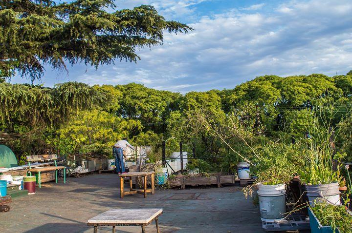 Diseño Urbano en Terrazas #AgriculturaUrbana 13 - OiHoy Casa Abierta