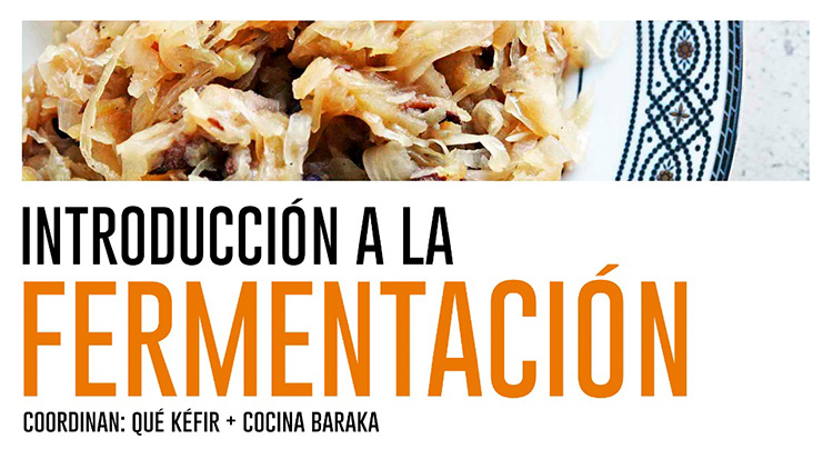 Introducción a la fermentación 13 - OiHoy Casa Abierta